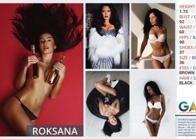 models (3)